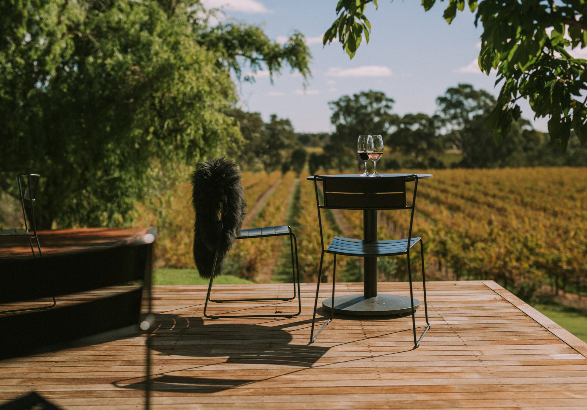 1K CHAIRS X HEWITSON WINES-30355